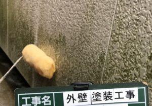 <p>次に、外壁のコケや汚れを根こそぎ洗い流すため、高圧洗浄前に薬品を塗布します。
