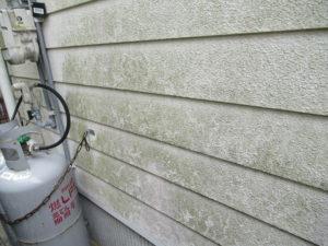 <p>外壁はチョーキング現象と退色が見られ、日当たりの悪い面にはコケが発生していました。