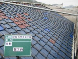 <p>屋根は塗膜が剥がれ汚れも目立ちます。
